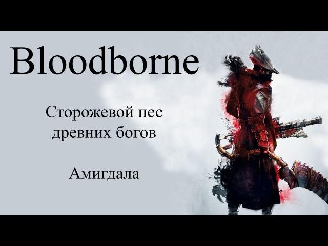 Боссы проклятой чаши Bloodborne Сторожевой пес древних богов Амигдала