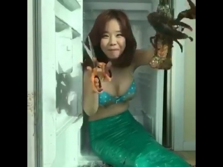 Showry fb - The Little Mermaid