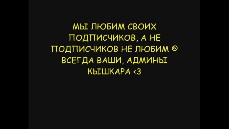 С ДНЁМ РОЖДЕНИЯ КышКар