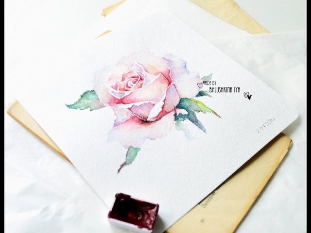 Рисуем розу акварелью Rose watercolor paint