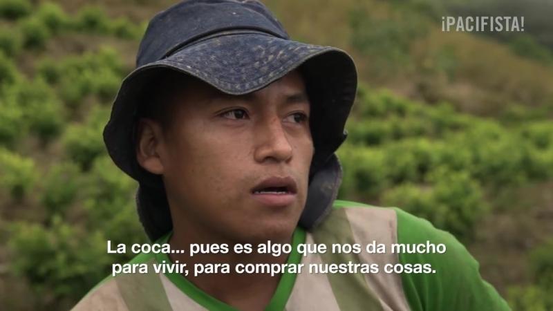 PACIFISTA presenta: El Naya, la ruta oculta de la cocaína a UZSA.
