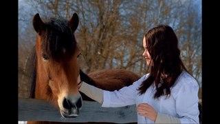 Стань студентом Вологодской ГМХА - получи профессию ветеринарного врача.