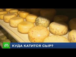 Куда катится российский сыр: мнения производителей и экспертов