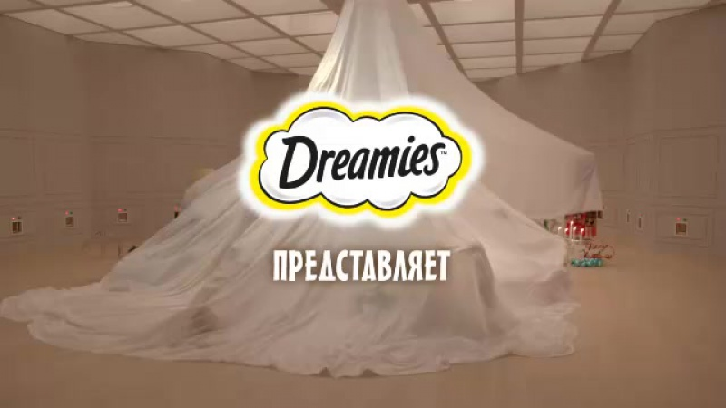 В новый год при деле кот.  Лакомство Dreamies™ его надолго займет.