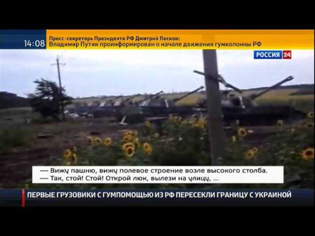 Мишка 1 Россия24 22 08 2014