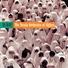 The Toraia Orchestra of Algiers - Uotaaref Men Elihabek