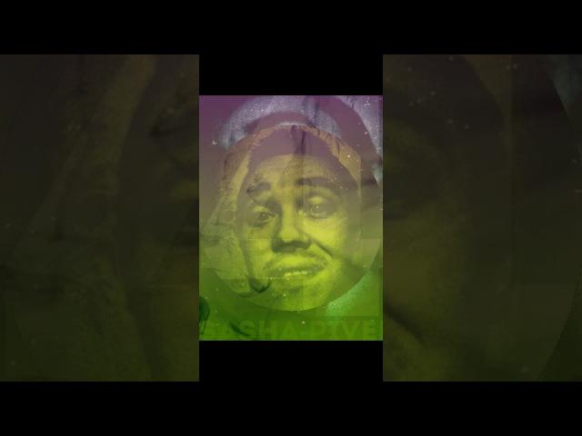 Майти Буш Сезон 1 Серия 1 Кенгуру Убийца The Mighty Boosh 1x01 Killeroo