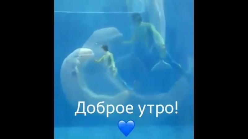 VIDEO-2019-06-01-09-44-28.mp4