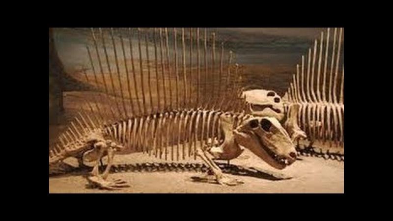 Умопомрачительные находки археологов Секреты жизни Динозавров Документальный фильм 2017
