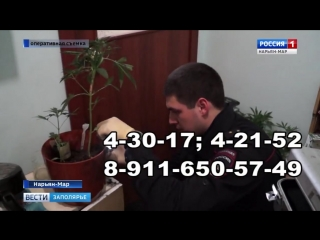 Россия-1 Нарьян-Мар HD В НАО стартовала акция Сообщи, где торгуют смертью