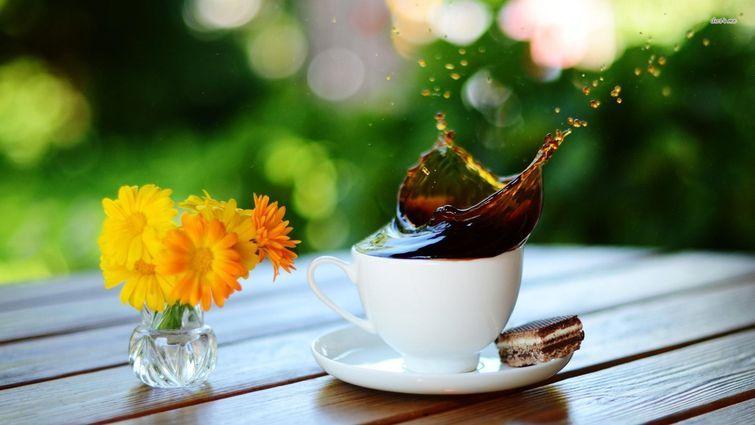 15 фактов о кофеине, которые вас удивят, изображение №1