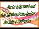 Pacto Internacional dos Direitos Econômicos Sociais e Culturais