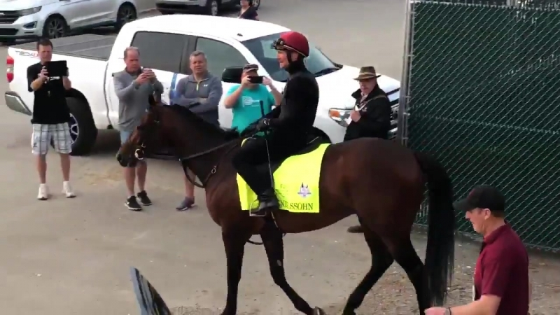 MENDELSSOHN gets his first view of the @KentuckyDerby throng @ChurchillDowns for @Ballydoyle