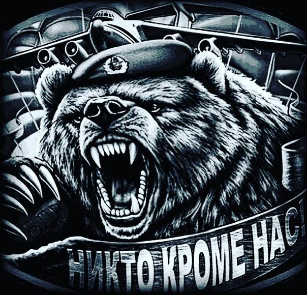 схеме вдв медведь картинки вступали контакт
