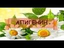 ДОБАВКА АНТИСТАРЕНИЯ И ОМОЛАЖИВАНИЯ АПИГЕНИН 4 02 2019