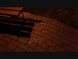 Левенцовские вандалы сорвали и перебили игрушки на уличной елке