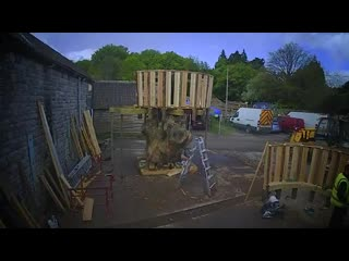 Want to see how we created the rustic tree house for the back to nature garden at rhschelsea flower show - this unique treehouse