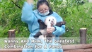 Nanny And Milk The Greatest Combination For A Panda iPanda