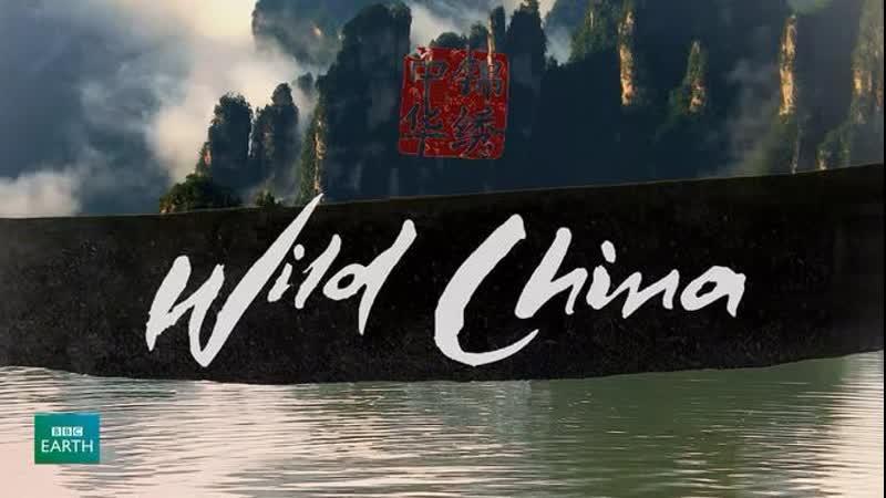 BBC Дикий Китай 6 серия Время возможностей