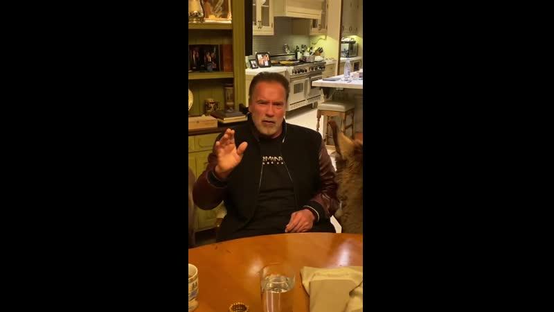 Арнольд Шварценеггер просит оставаться дома и забыть про рестораны