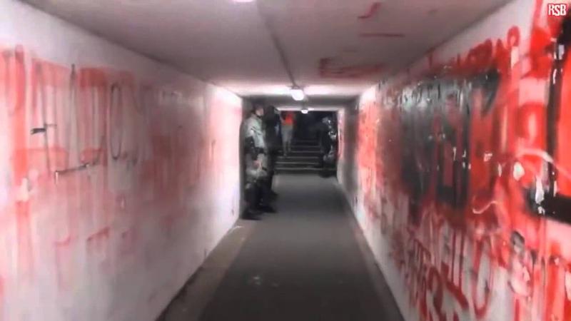 Tunnel dentrée des joueurs au Marakana de Belgrade