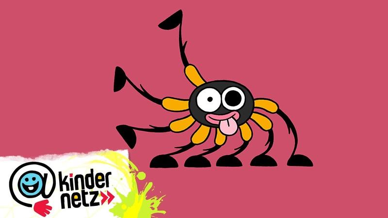 Spinne   Ich kenne ein Tier   SWR Kindernetz