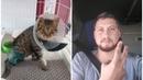 Дальнобойщик спас сбитого на трассе котёнка