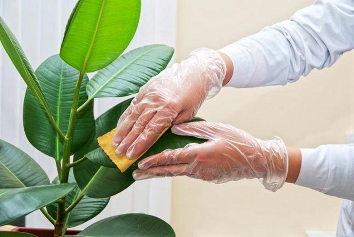 Перчатки уберегут ваши руки и ногти