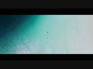 Kygo - Happy Now (ft. Sandro Cavazza)