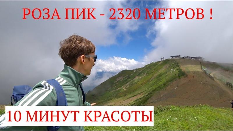 VLOG🚀РОЗА ПИК 2320 МЕТРОВ 10 МИНУТ КРАСОТЫ КРАСНАЯ ПОЛЯНА