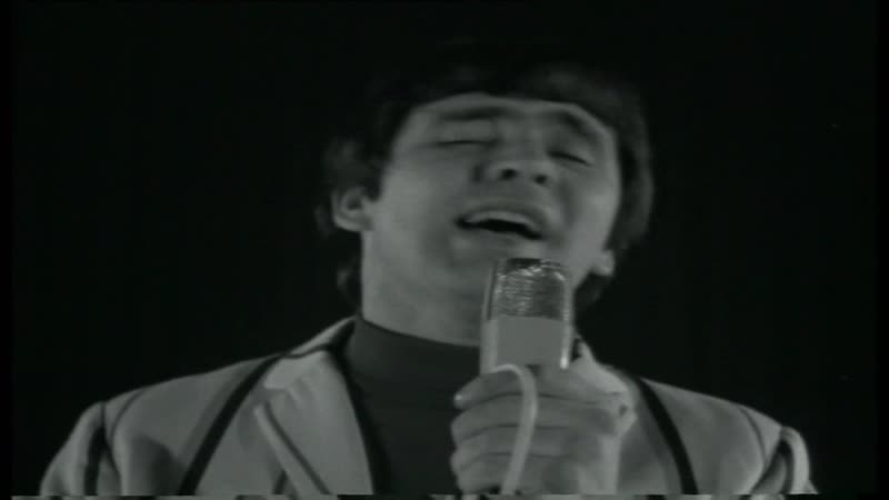 The Troggs — With A Girl Like You (Twien 30-07-1966) = 40 Jaar Top 40 1965-1966
