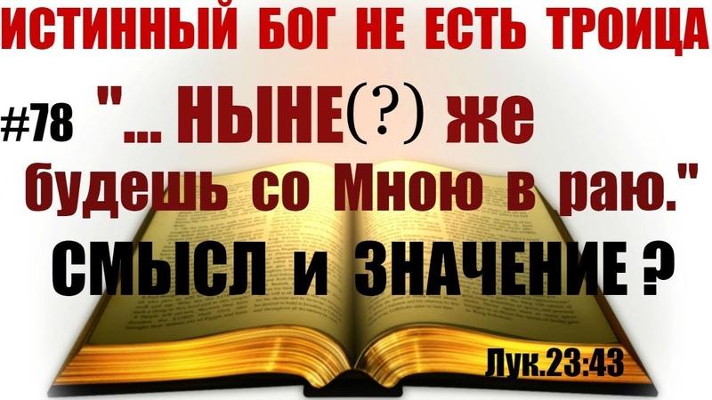 78 Какой истинный смысл слов Христа сказанных злодею на кресте? Лук.23:43