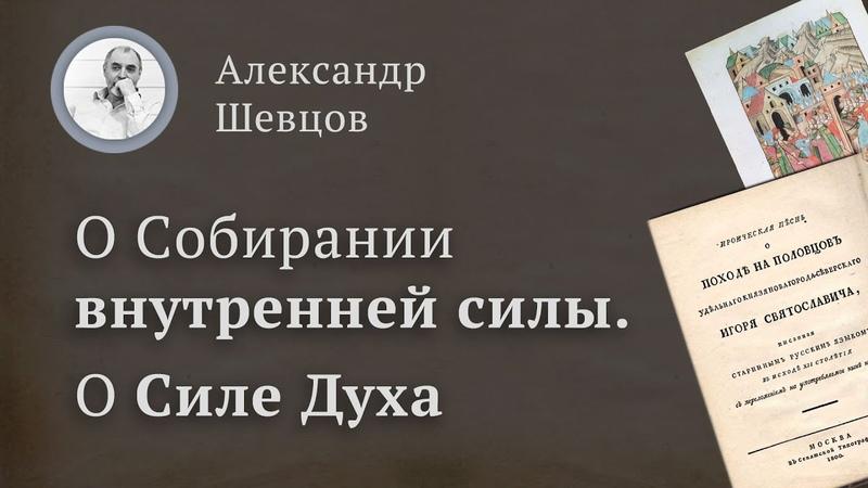 О Силе духа и Собирании внутренней силы на примере исторических источников | Александр Шевцов