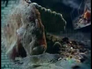 Морской черт  одно из самых страшных животных планеты
