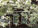 Деревенька с забором -Эллина Лахтина