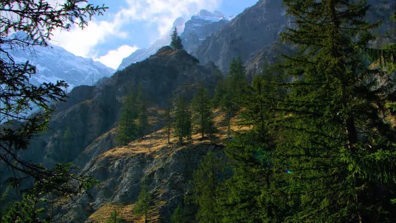 Дикая природа Германии / Берхтесгаденские Альпы