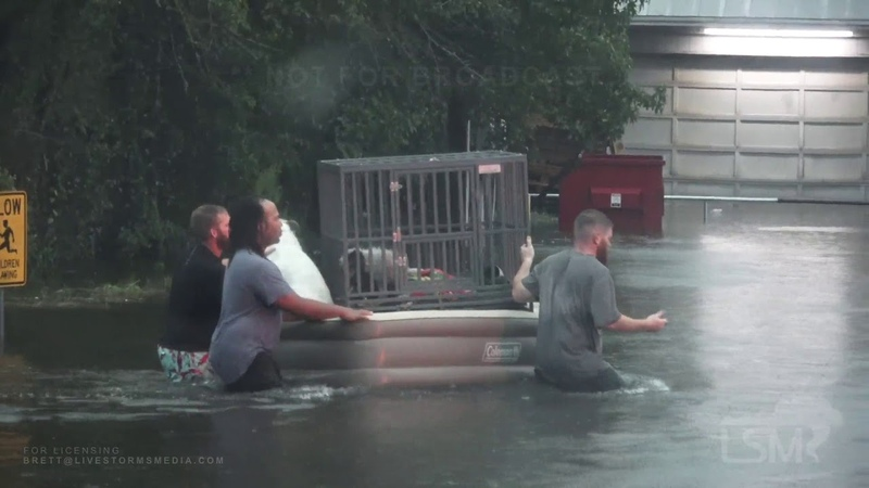 9-19-19, Good Samaritans Rescuing Dogs and People Trapped in Major Flooding, Liberty TX .mp4