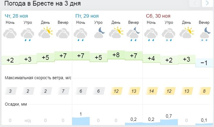 Оранжевый уровень опасности из-за гололеда и тумана объявлен в Беларуси