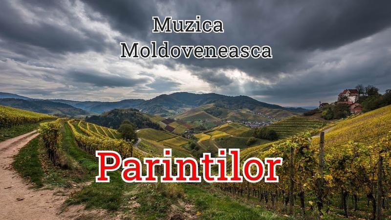 Muzica Moldoveneasca Parintilor