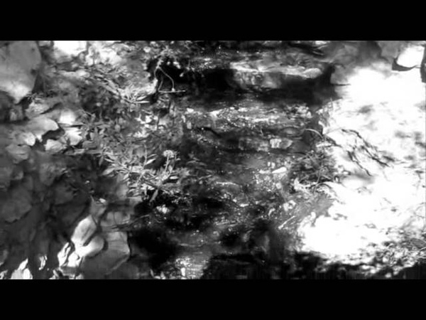 The Martyrs Of Doom L ' Amourir Feat Regina P Copernic