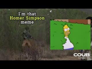 Гомер Симпсон в Арме