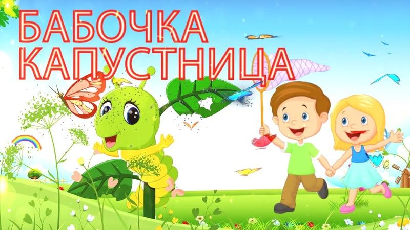 БАБОЧКА КАПУСТНИЦА Детские песни