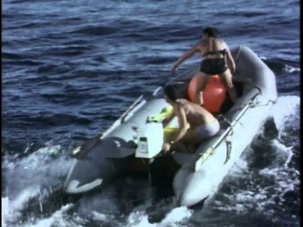 05 1968 Киты и кашалоты Подводная одиссея команды Кусто