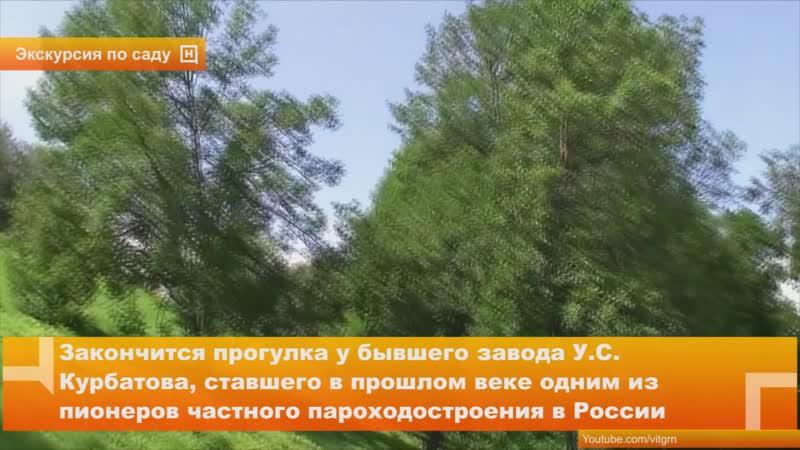 Краеведческая прогулка «Загадки Александровского сада» пройдет 6 августа