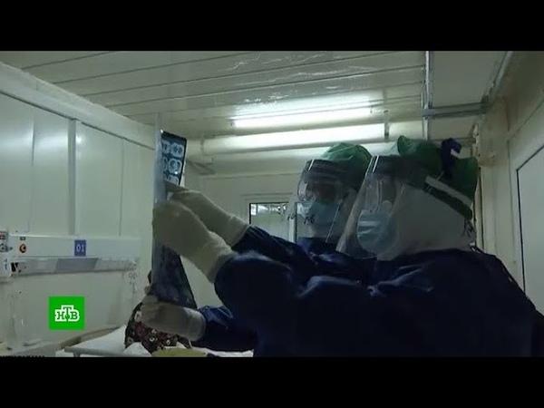 Заразившуюся на Diamond Princess россиянку доставили в японскую больницу