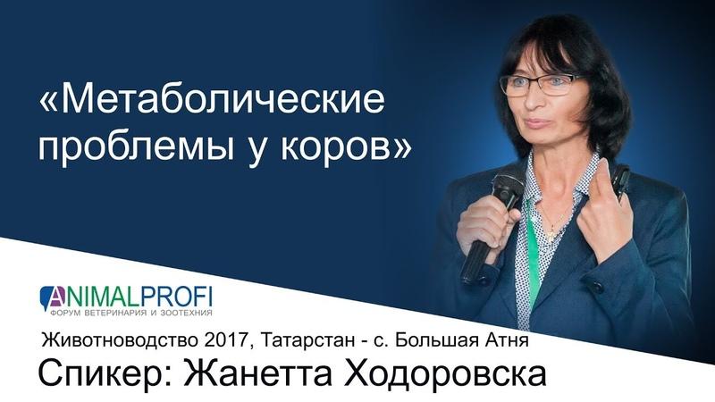Общероссийский Форум ANIMALPROFI Животноводство Жанетта Ходоровска Метаболические проблемы у КРС