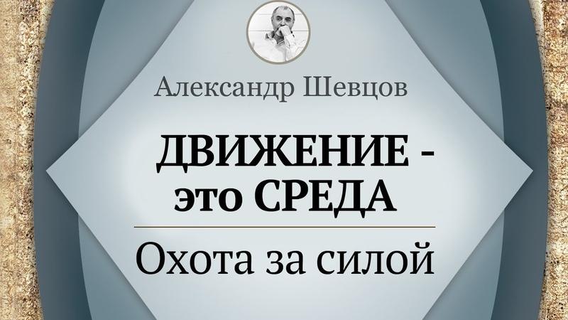 Движение - среда. Охота за силой | Шевцов Александр