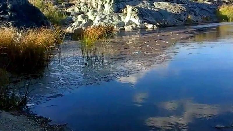 Природа казахстана, денисовка, костанай, The nature