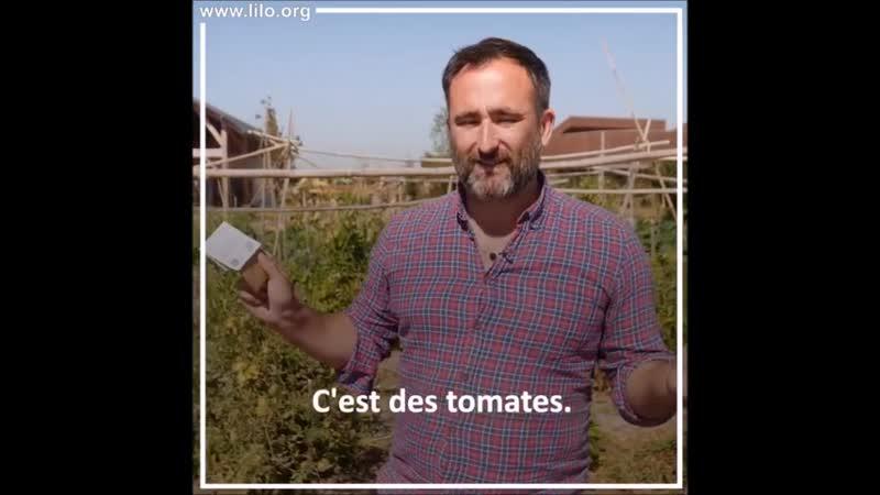 Alimentation et environnement Graines de troc