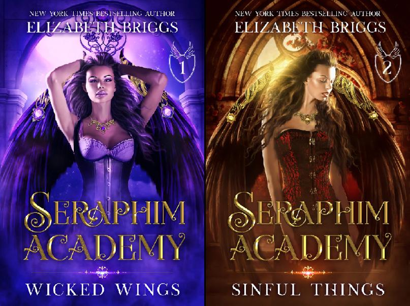 Seraphim Academy 1  Wicked Wing - Elizabeth Briggs